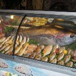 Selection of Fresh Fish.
