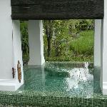 Plunge pool in the rear of villa