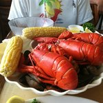 lobster mania clam bake