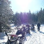 Snowmobiletrip