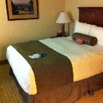 Best Western Room in Billings MT