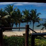 View From the Mango Bure