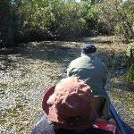 Travelin the everglades on a poleboat tour
