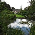 Lovely pond and gardens
