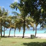 木陰からビーチ撮影