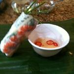 pork and shrimp spring roll - bad picture sorry!