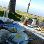 We wanted to eat breakfast outside facing the beach...and they brought the food to us!