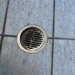 filthy drain