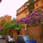 Via Giulia, Rome - Image of Tiber LImo