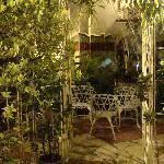 ecco il tripudio di piante nel cortile interno