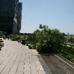 View of High Line