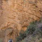 Ascending the South Rim's Coconino Sandstone