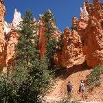 Gorgeous color contrasts... Navajo Loop
