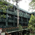 serena tree hotel (the mountain lodge)
