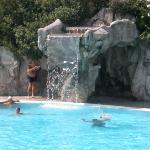 la bellissima cascata della piscina