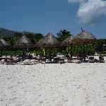 Pick your Palapa campground