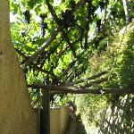 The path from Maiori to Minori