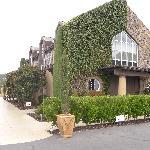 Signorello House