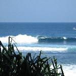 Surf brake