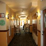 The rooms and hallways are always clean and pleasantly scented.