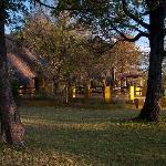 Set in woodland gardens