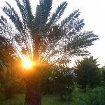 Sonnenaufgang Anatolia Resort