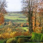 Autum from a bedroom window