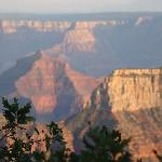 Changing Colors of the Canyon
