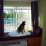 Ben's window seat