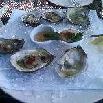 Oysters on the half shell--CT bluepoints, as I recall.