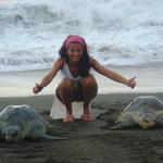 tartarughe Playa Ostional