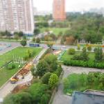 View from 12th Floor - Park side