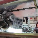 Ralphie's coat and gloves