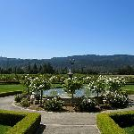 Fountain photo at Ledson Winery in the Sonoma Valley.