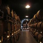 Deep inside the barrel storage cave at Lancaster Estate Winery in the Chalk Hill region of the A