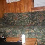 nasty couch