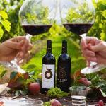 Disfruta de una comida privada en nuestros viñedos