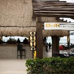 Barracuda Bar