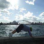 Harbour Bridge Plank