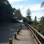 Beautiful rain forest and coastal walks