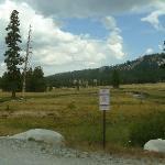 Tuolumne Meadows(1)