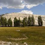 Tuolumne Meadows(3)