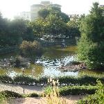 Paloma Park