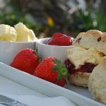 Cream Tea at Whipsiderry
