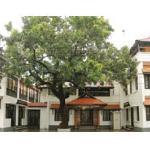 Trivandrum Hotel Foto