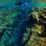 """Snorkeling - """"Into the Blue"""""""
