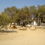 Taverna Nicolas from the beach