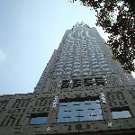 下から眺める都庁。