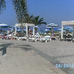 pool/ grass area
