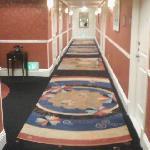 ホテルの廊下②
